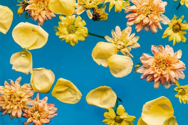 Fleurs jaunes dans l'eau bleue