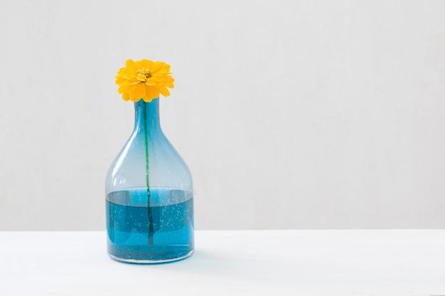 Fleurs jaunes dans un vase en verre sur fond blanc