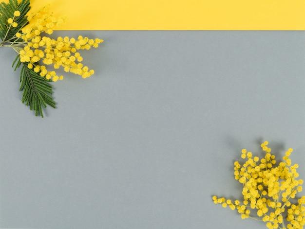 Fleurs jaunes sur fond gris et jaune. couleur de l'année. copiez l'espace.
