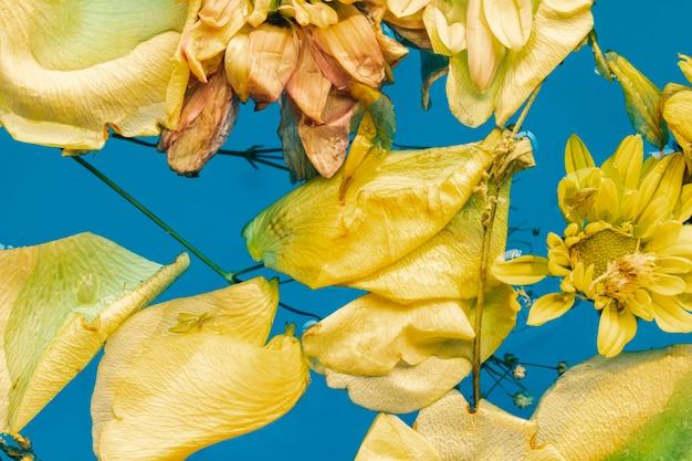 Fleurs jaunes et pétales dans l'eau