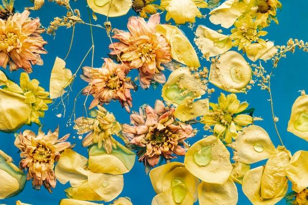 Fleurs jaunes plates dans l'eau bleue