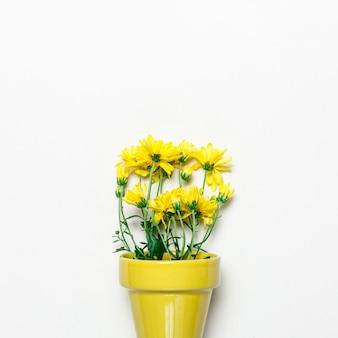 Fleurs jaunes en pot jaune sur une surface blanche