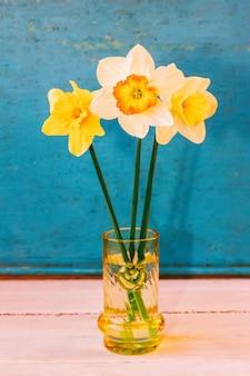 Fleurs jonquille dans un vase en verre sur un bleu