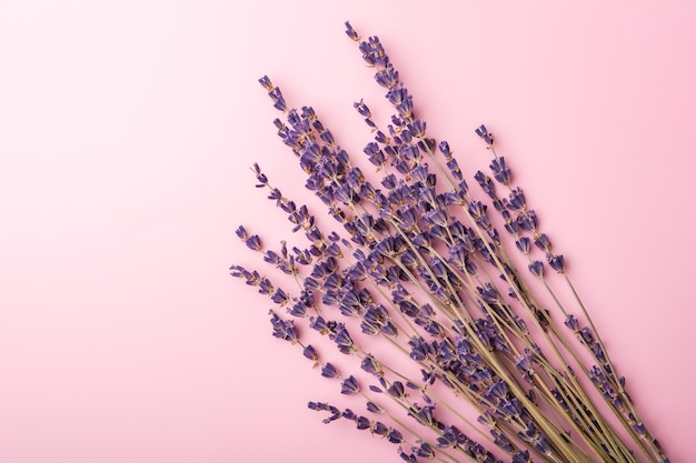 Fleurs de lavande sur fond rose. arrangement de mariage simple. copier l'espace