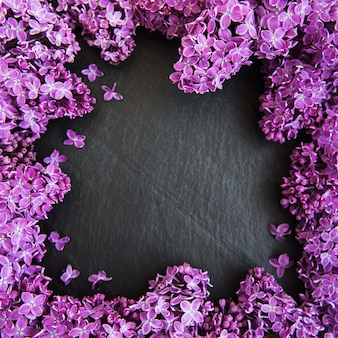Fleurs lilas comme cadre