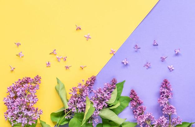 Fleurs lilas avec des feuilles