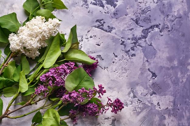 Fleurs lilas sur fond de béton violet.