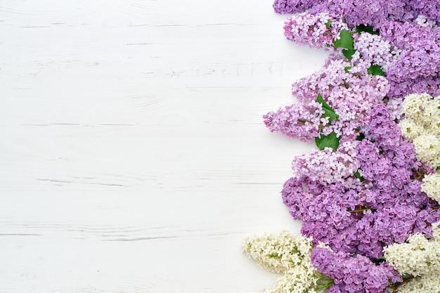 Fleurs lilas de printemps sur fond blanc. vue de dessus, copiez l'espace.