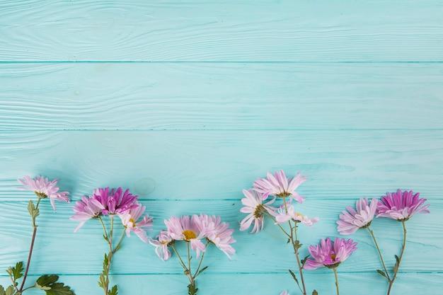 Fleurs lumineuses dispersées sur une table en bois