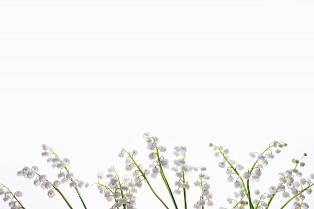 Fleurs de lys blancs de la vallée isolés sur blanc. motif de fleurs.