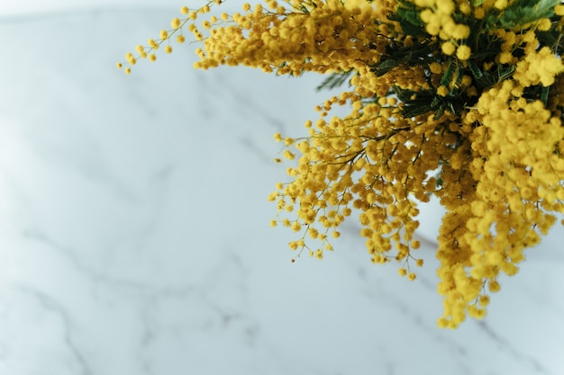 Fleurs de mimosa sur une surface en marbre