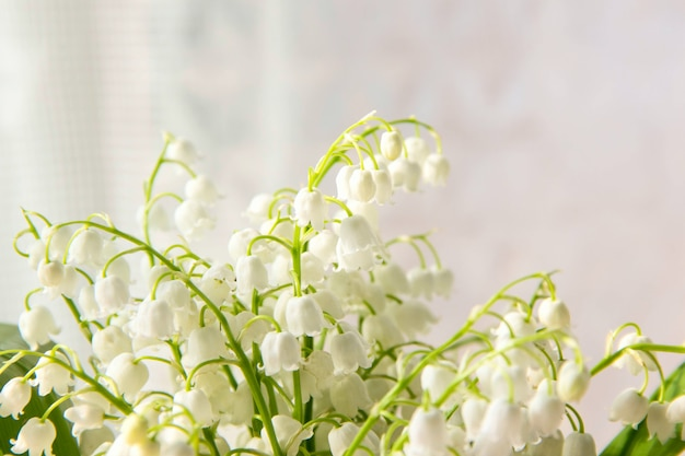 Fleurs de muguet. fond naturel avec des muguets en fleurs de la vallée des muguets