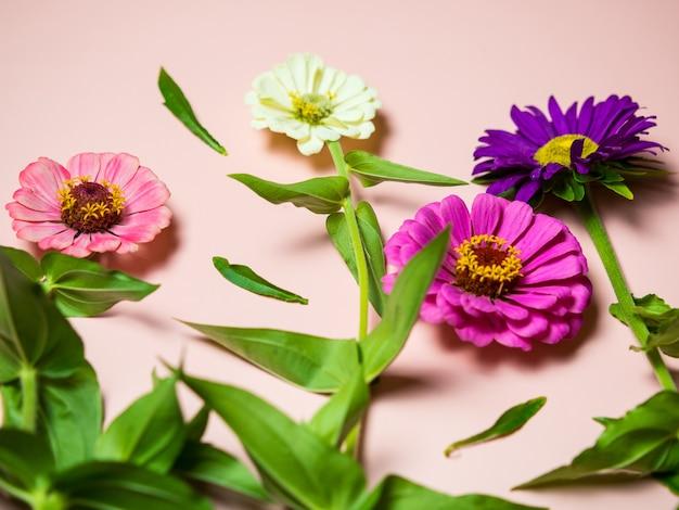 Fleurs multicolores lumineuses sur un espace de copie de fond rose, pour une carte postale et des vacances