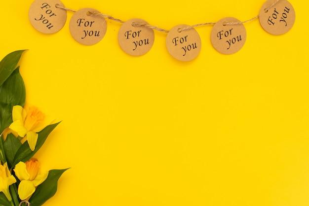 Fleurs de narcisse jaune belle floraison isolés sur jaune