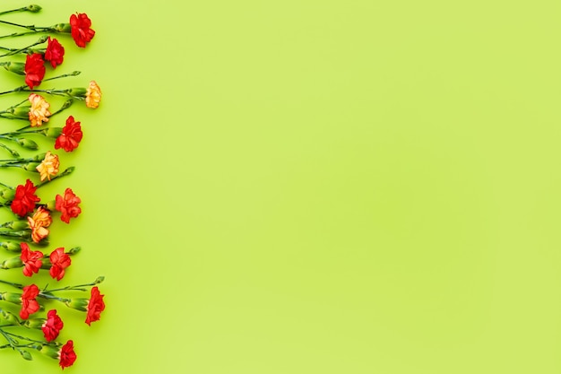 Fleurs d'oeillets rouges et jaunes sur fond vert.
