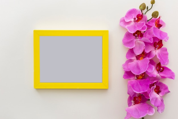Fleurs d'orchidée fraîches roses avec cadre photo vide vide sur une surface blanche
