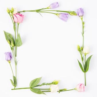 Fleurs pâles formant un cadre rectangulaire