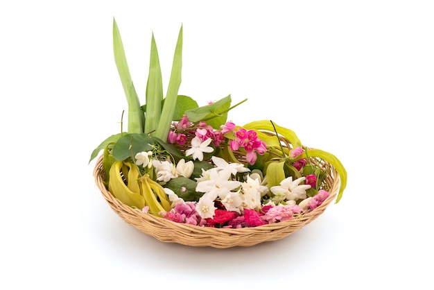 Fleurs parfumées telles que la fleur d'ylang-ylang, la rose, le jasmin et les feuilles vertes de pandanus isolées.