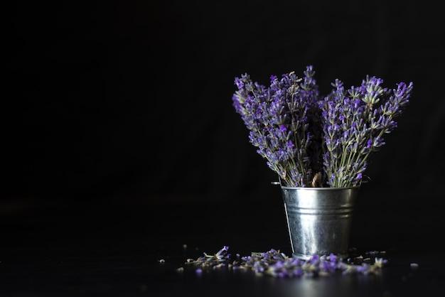Fleurs parfumées violettes provençales sur fond noir. herbes et huiles essentielles de lavande.