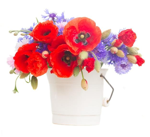 Fleurs de pavot et de maïs bleu en pot isolé