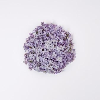 Fleurs et pétales de lilas se trouvent sur un tableau blanc. cosmétique naturelle
