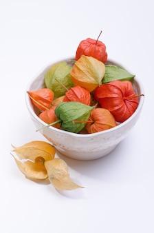 Fleurs de physalis multicolores dans une assiette sur fond blanc. modèle avec des fleurs de physalis rouges mûrs.