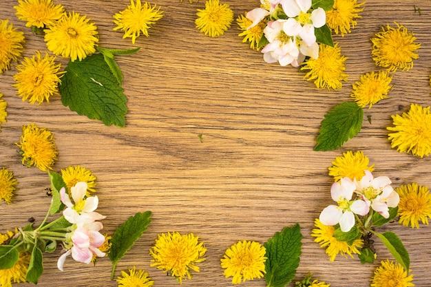 Fleurs de pissenlit jaune et fleurs de pommier blanc se bouchent pour l'espace de copie d'arrière-plan. vue de dessus, cadre de couleur avec espace pour le texte, mise à plat