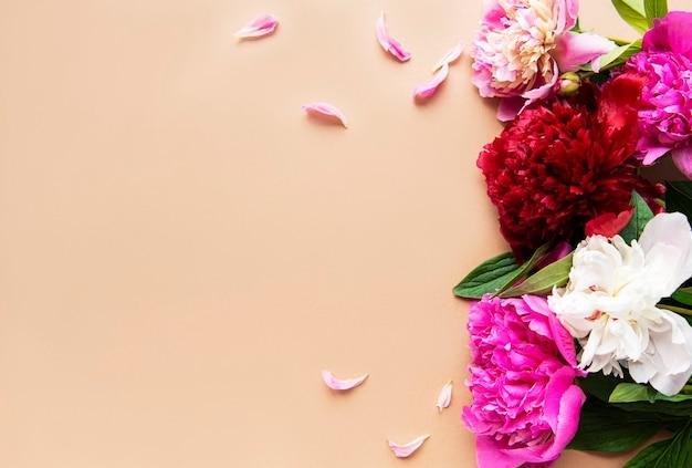 Fleurs de pivoine rose comme bordure sur une surface brune