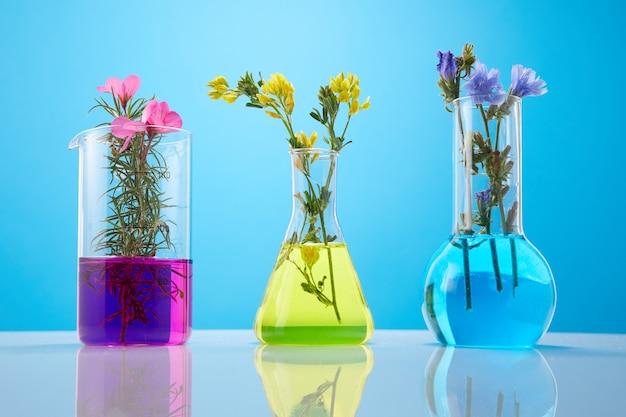 Fleurs et plantes dans des tubes à essai sur fond jaune. le concept de recherche biologique.
