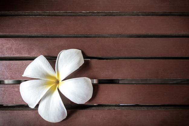 Fleurs de plumeria blanc sur une table en bois