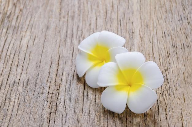 Fleurs de plumeria sur fond en bois avec ton vintage et vignette