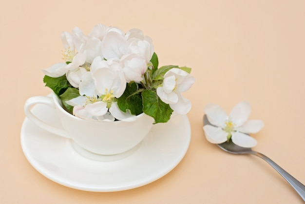 Fleurs de pommier de printemps blanc fleurs en fleurs dans une tasse de café avec une cuillère sur un fond beige. concept de printemps été. carte de voeux.