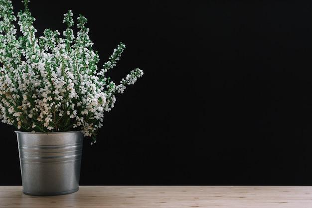 Fleurs en pot blanches sur une table en bois sur fond noir