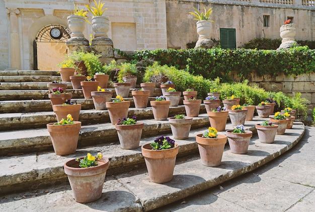Fleurs en pot dans le jardin présidentiel sr anton à attard malte