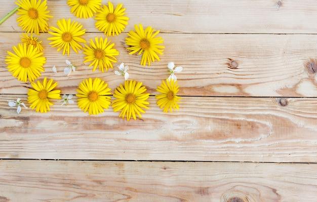Les fleurs printanières jaunes sont disposées sur un fond en bois. vue de dessus.