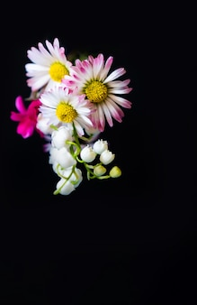 Fleurs de printemps cadeau rose jaune copie espace fond noir