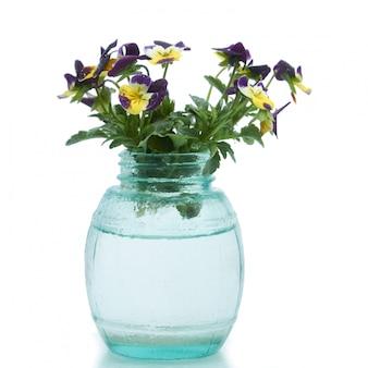 Fleurs de printemps dans un vase de verre en blanc isolé