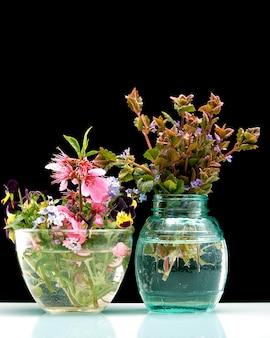 Fleurs de printemps dans un vase de verre en noir isolé