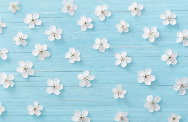 Fleurs de printemps sur un mur en bois bleu