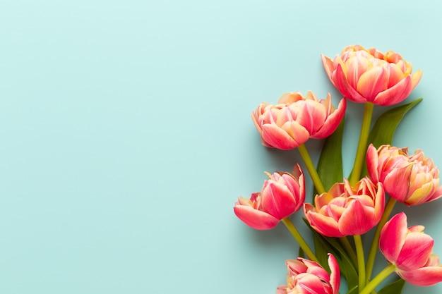 Fleurs de printemps, tulipes sur fond de couleurs pastel. style vintage rétro.