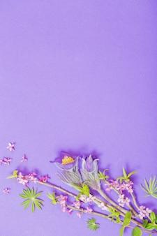 Fleurs de printemps sur violet