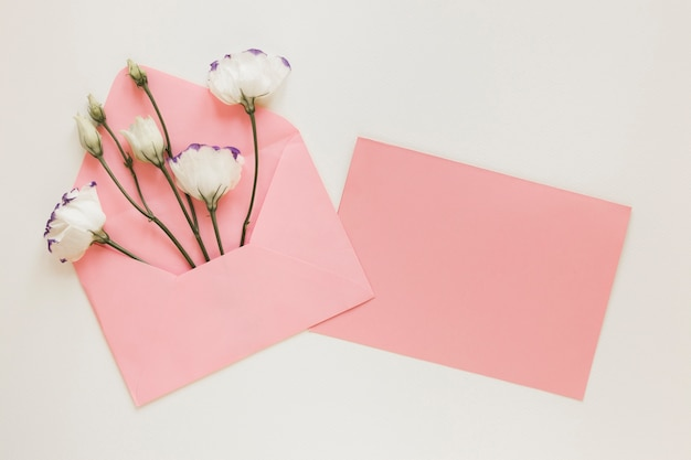 Fleurs de printemps en vue de dessus d'enveloppe