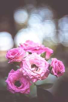 Fleurs rétro, fond de fleurs vintage