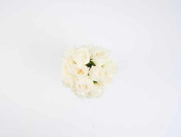 Fleurs roses blanches