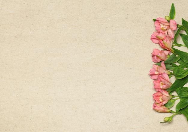 Fleurs roses en bouquet sur fond de granit beige
