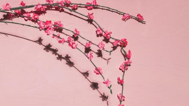 Fleurs roses dans une branche