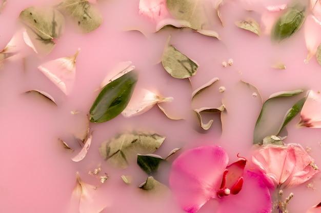 Fleurs roses dans de l'eau colorée rose