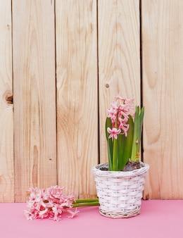 Fleurs roses dans un vase sur un fond en bois. fond rose
