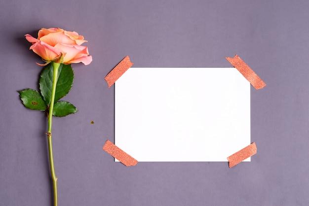 Fleurs roses fraîches et papier pour le texte attaché par du ruban adhésif sur gris foncé. vue de dessus.