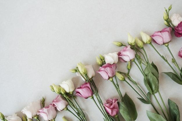 Fleurs roses sur gris